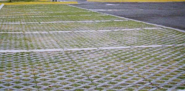 Blokret pavimentos intertrabados y reticulados danilo for Adoquines para jardin precio